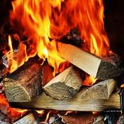 Für Feuerschalen eignen sich vor allem Holzscheite als Brennstoff